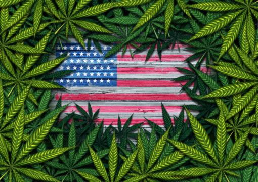 marijuana-surrounding-us-flag-1.jpg